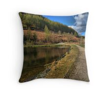 glyncorrwg  ponds port talbot wales Throw Pillow