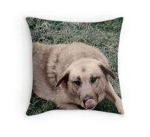 Colorized Duke Throw Pillow
