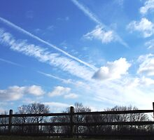 Cloud Bullets by Judi Taylor
