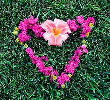 A Heart Through A Flower by steedent
