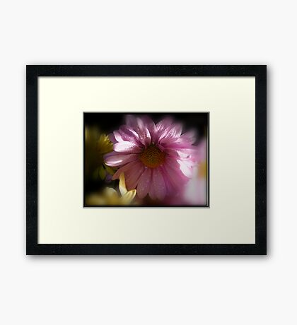 Dew Of The Faeries Framed Print