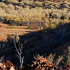 McDonald Ranges- Central Australia #3 by iansimages