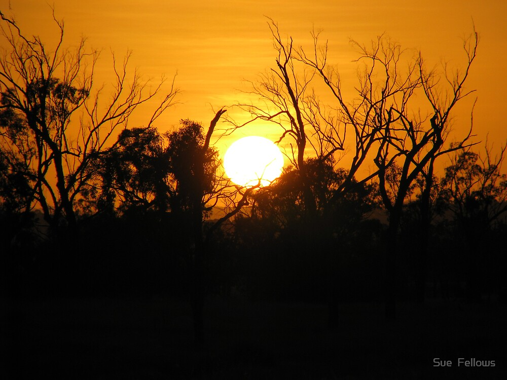 Sunset by Sue  Fellows