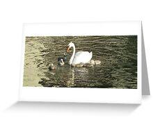 Swan update Greeting Card