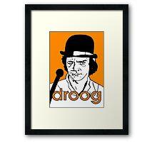droog Framed Print