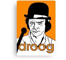 droog Canvas Print