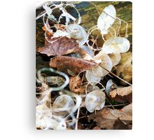 Arranged by the Wind Canvas Print