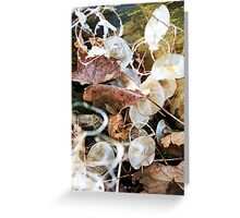 Arranged by the Wind Greeting Card
