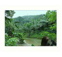 828-Tropical Riverside Art Print