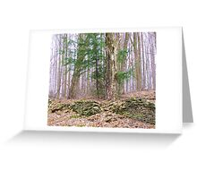Old Property Line Greeting Card