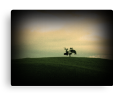 Little Tree Canvas Print