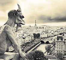 Looks Like Bad Weather: From the Notre Dame, Paris by Dave Underwood