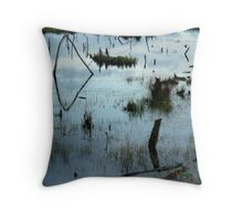 Blue Mood Reflections Throw Pillow