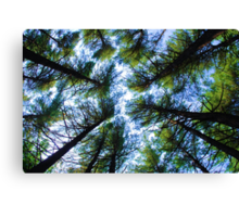 The Viewpoint of the Lowly One Canvas Print