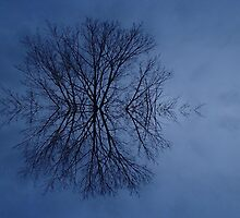 Snowflake? ..Think Again by RosPho