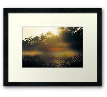 Elfin Glade Framed Print