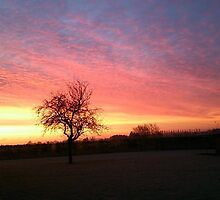 Winter Sunrise over the Barns by kirsten-designs