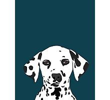 Ryan - Dalmatian Dog Print for Dog Lover, Pet Owner Photographic Print