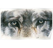 Eye-Catching Wolf Poster