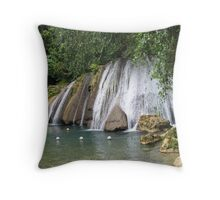 Reich Falls Throw Pillow