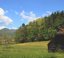 Springtime in the Valley by Lisa G. Putman