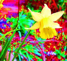 Spring by Lee Kerr