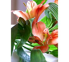 Floral greetings Photographic Print