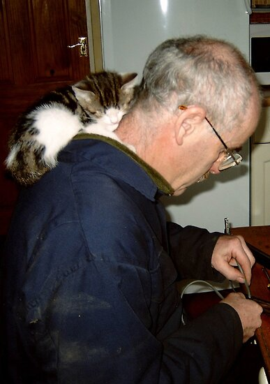 Jasper Cat  Loves Dad Most of All  by Angela Harburn
