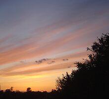 Painted Sky II by Jerry Stewart