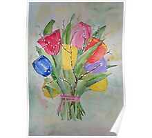 Colours Tulips Poster
