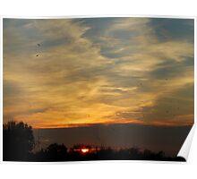 savanah sunset & returning crows Poster