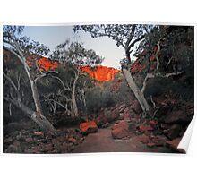 Kings Canyon Twilight NT Australia Poster