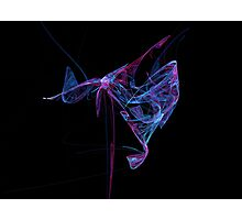 Fractal Butterfly Photographic Print
