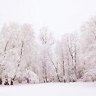 Snow trees by Lynette Dobson