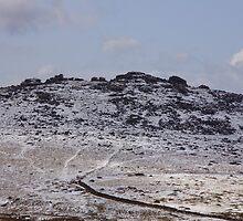 Dartmoor in april 2008 by brucemlong