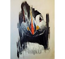Smear puffin Photographic Print