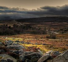 Burbage Valley by Andy Harris