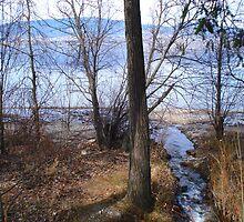 Bertram Creek by Gregory Ewanowich