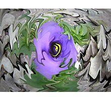 Liquid Beauty Photographic Print