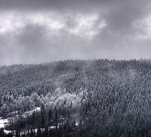 Mist by hynek