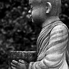 Monk holding bowl to collect food by Cvail73