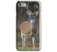 White-tailed Deer iPhone Case/Skin