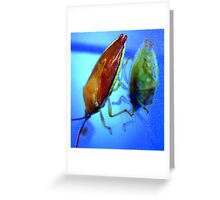 Stink Bug Blues Greeting Card