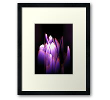 Starlight I Framed Print