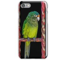 122514 flys the coup iPhone Case/Skin