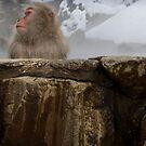 Hot tub by Akira