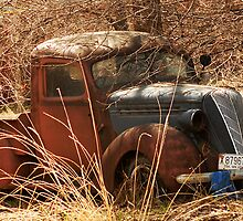 Vintage Work Truck 1963 by Ryan Houston