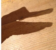 Shadow Puppet  by MissCellaneous