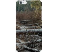 Bog in the Snow iPhone Case/Skin