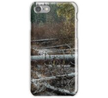 Bog in the Snow iPhone Case/Skin